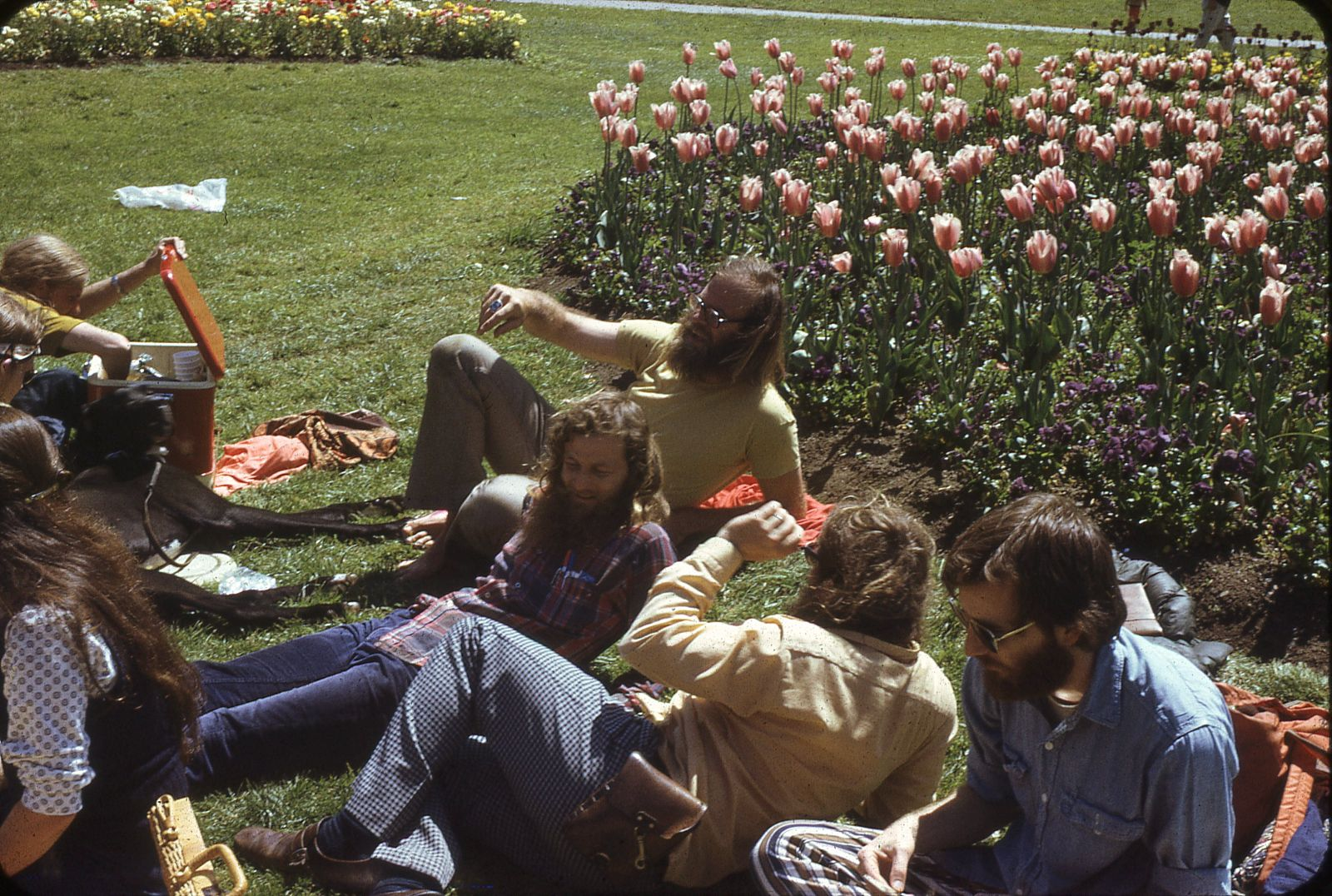 Jim Gray with former colleagues of the CAL Timesharing project at U.C. Berkeley, Golden Gate Park, April 1974